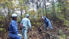 森林ボランティア 電気工事組合